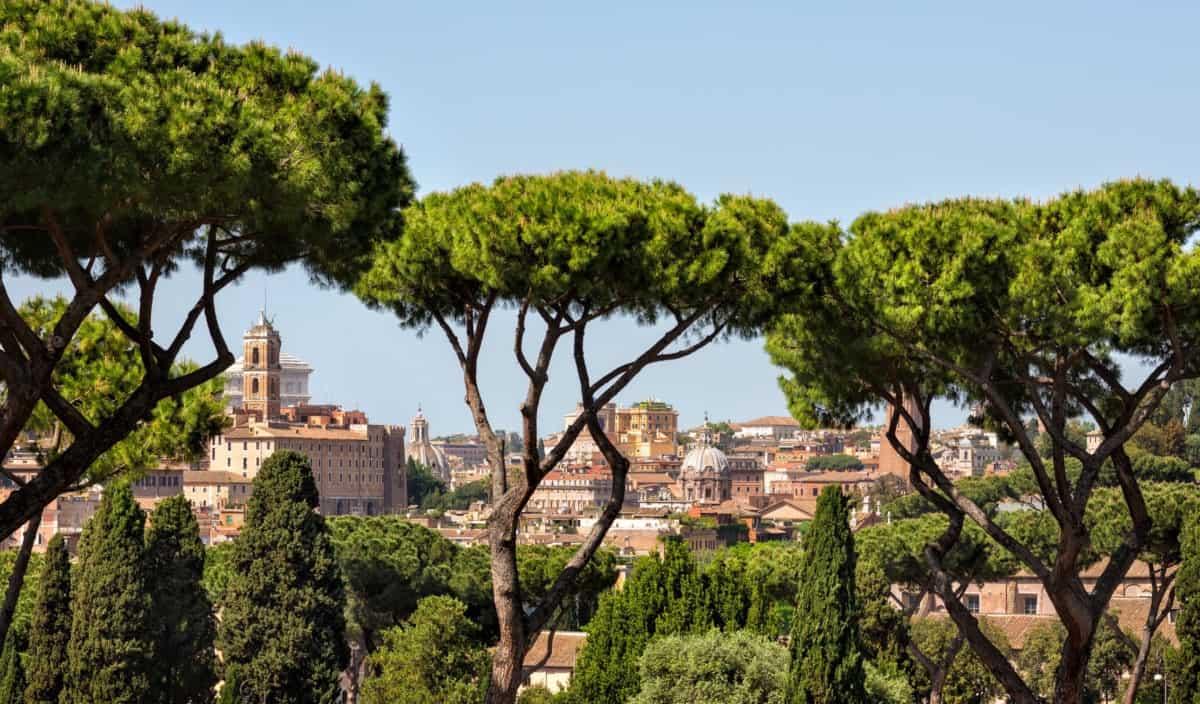Gli alberi storici di Roma, Gli alberi storici di Roma, Rome Guides