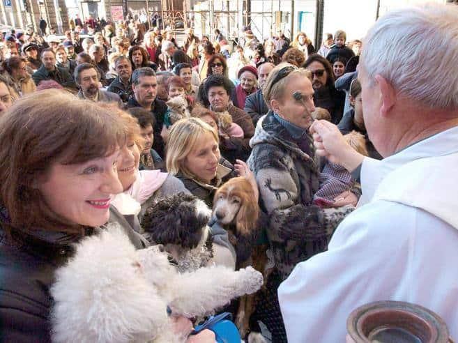 benedizione-animali-domestici