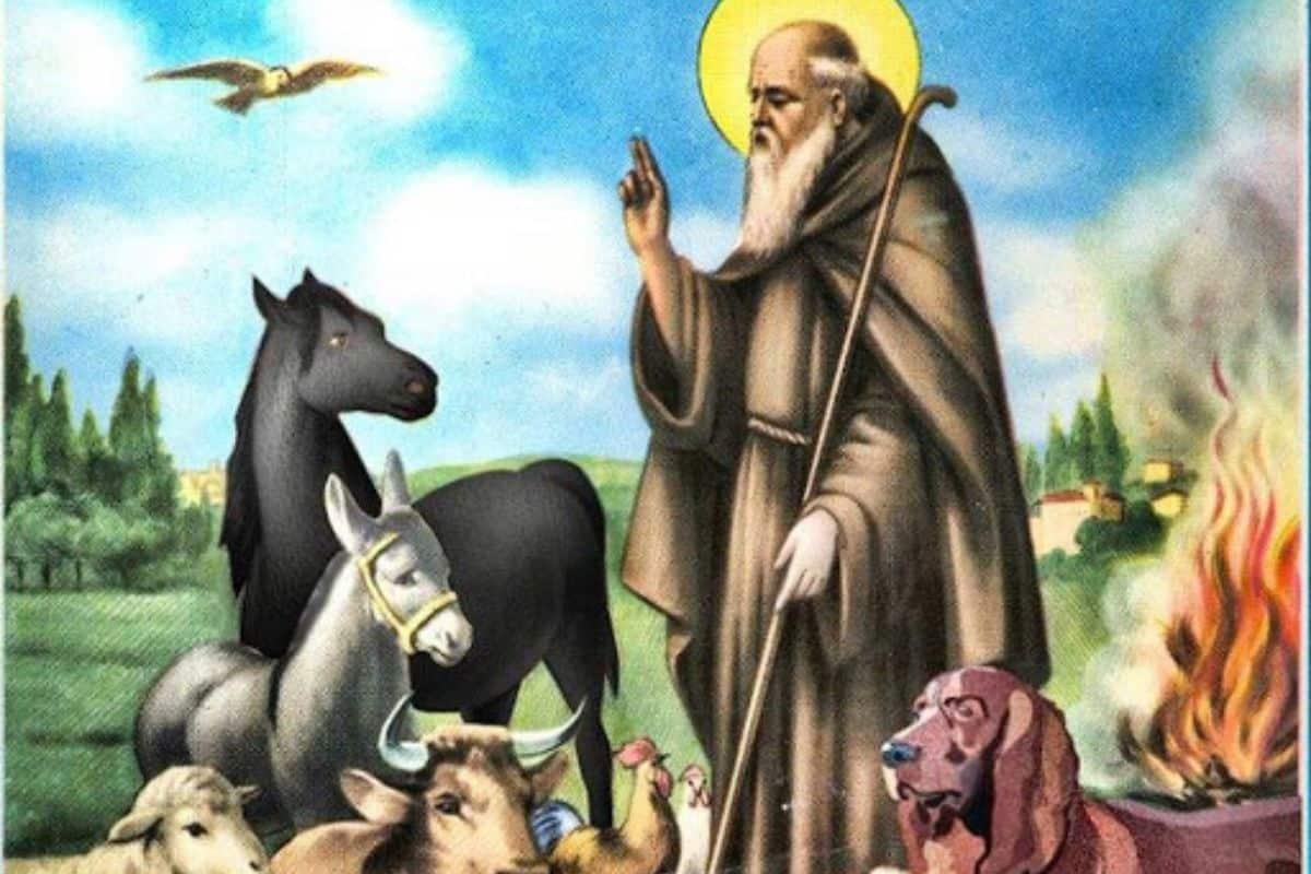 La benedizione degli animali a Sant'Eusebio, La benedizione degli animali a Sant'Eusebio, Rome Guides